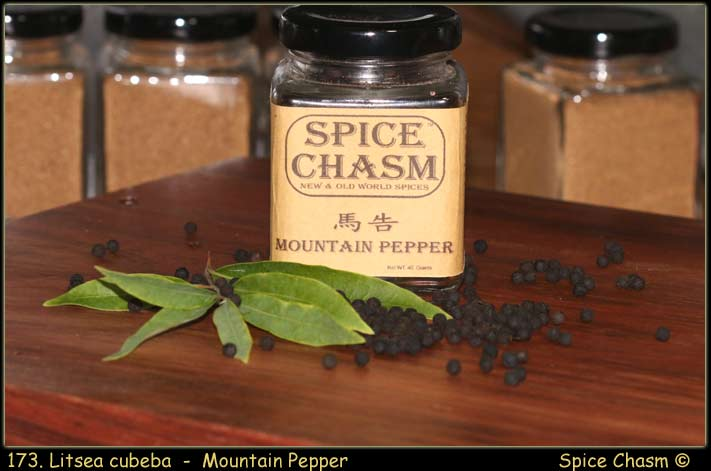 Mountain Pepper ~ Litsea cubeba